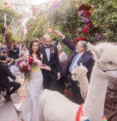 Alpacas Make For The Cutest Guests At Ara & Jorge's Festive & Vibrant Wedding
